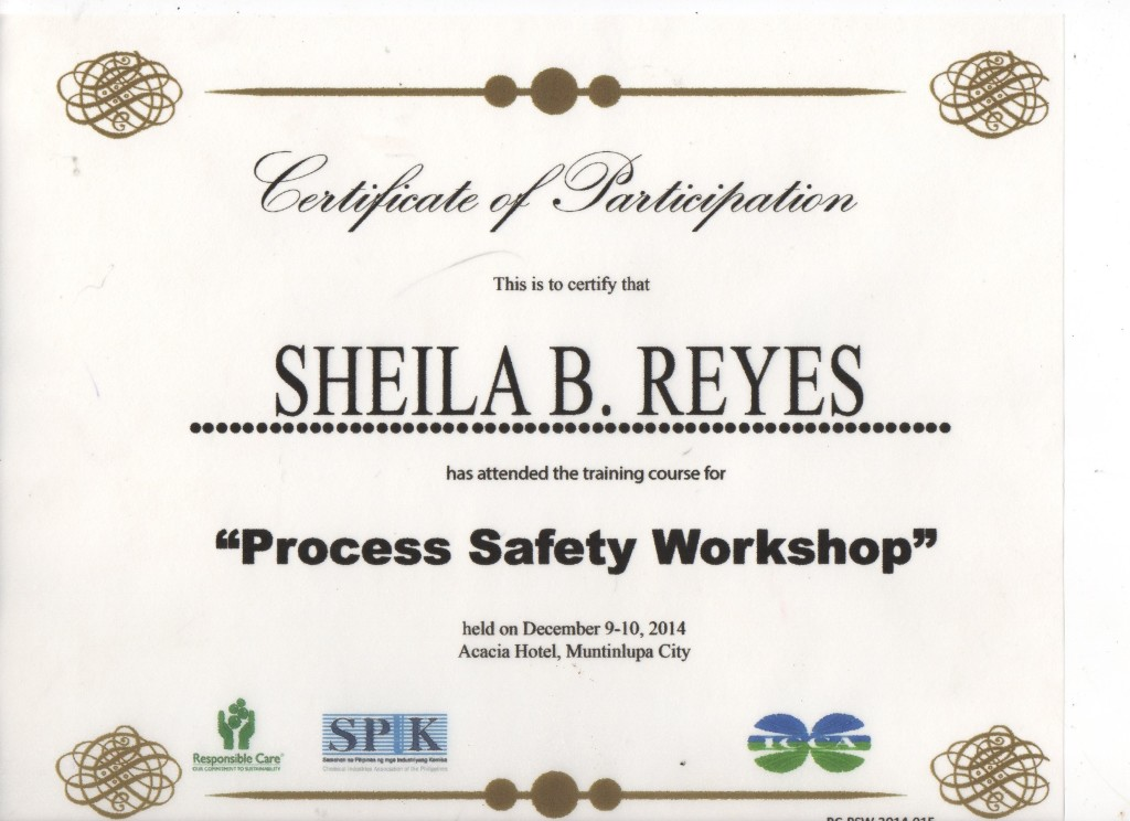 SPIK Responsible Care Process Safety Workshop