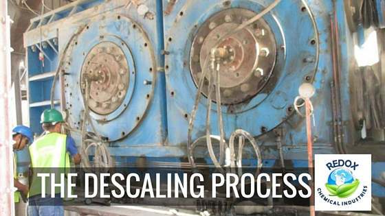 descaling process in the philippines