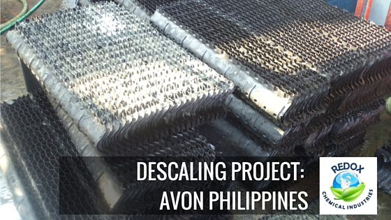 descaling project